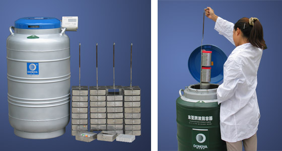 YDS-30-125F液氮罐